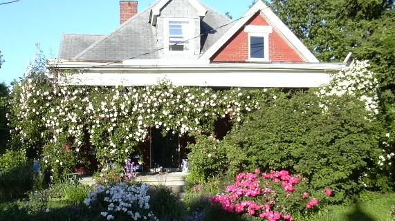 house-crop1